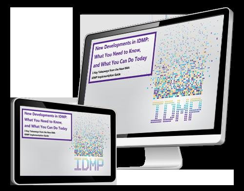 IDMP Executi8ve Brief Computer Screen