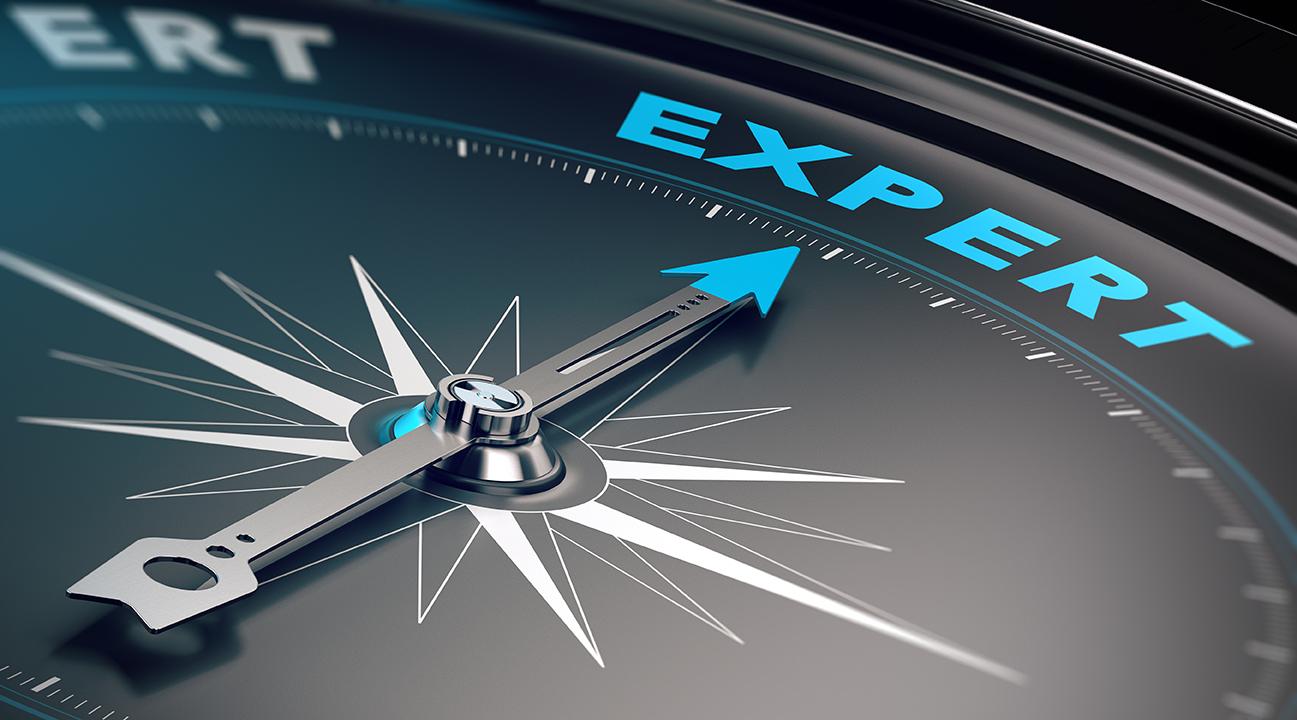 Expert Compass LR