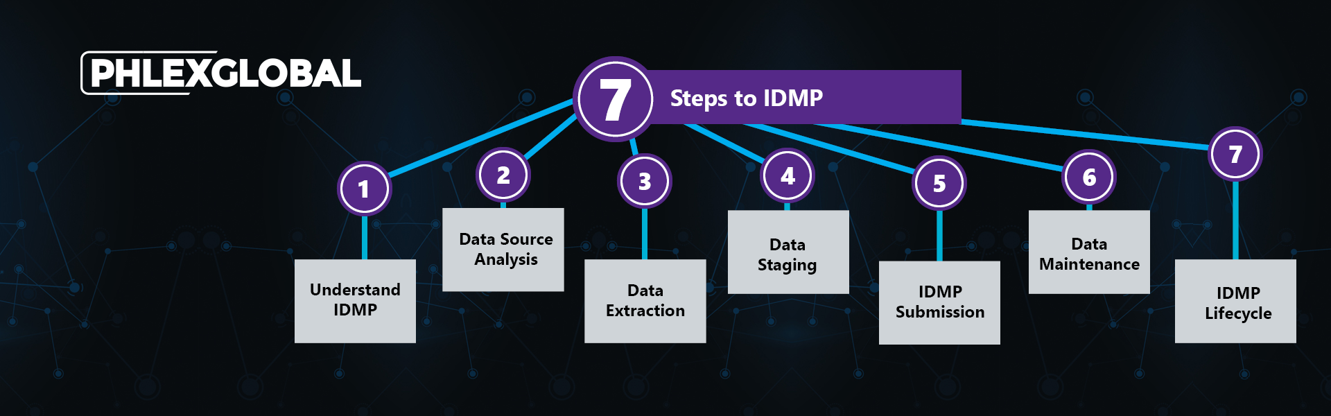 IDMP 7 Steps with Logo